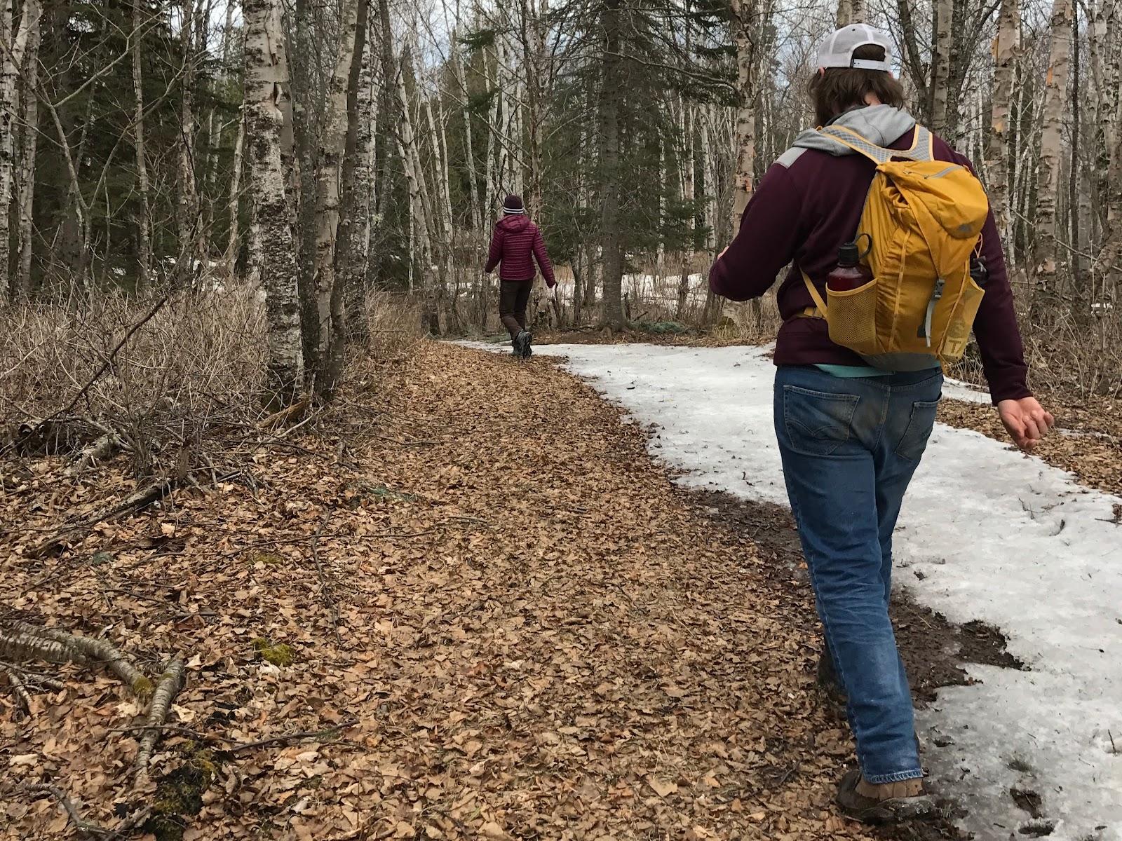 Enjoying a Springtime Wilderness Walk