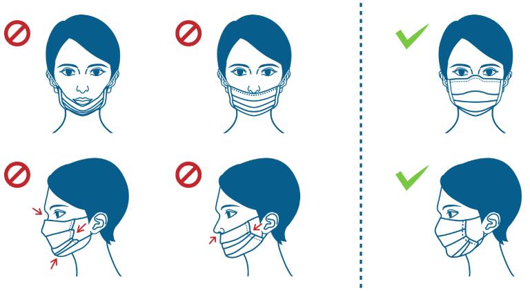 Ilustracion del uso correcto de un cubrebocas. Desde el tabique de la nariz hasta la barbilla.
