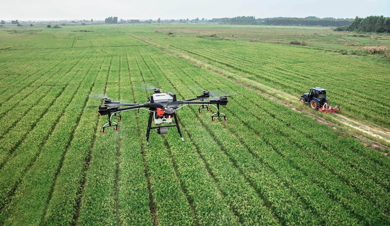 Os drones voam automaticamente pela propriedade e mapeiam informações de forma prática e precisa (Fonte: Pixabay)