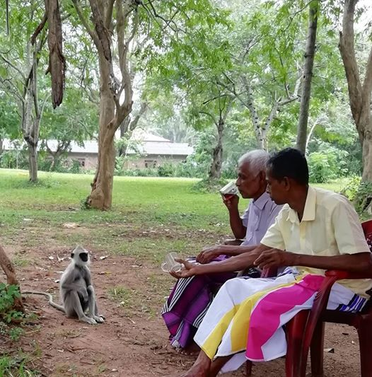 Afbeelding kan het volgende bevatten: 1 persoon, zitten, boom en buiten