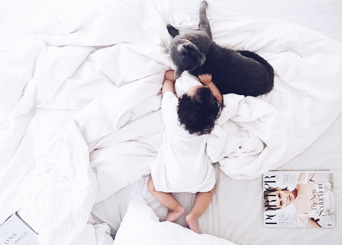 10 ways to introduce your pet to your new baby Cat and Baby