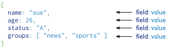 MongoDB Documents Looks Like