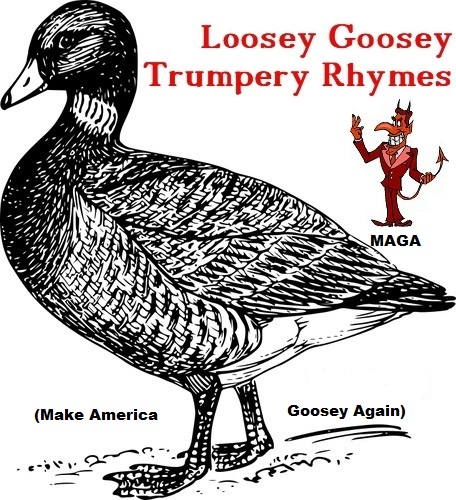 LooseyGoosey 7-22-2017 5-00-17 PM.jpg
