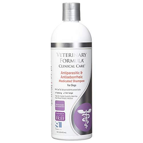shampoo 1.jpg