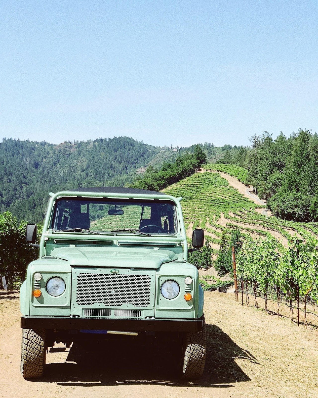 Vineyard tour long island trips