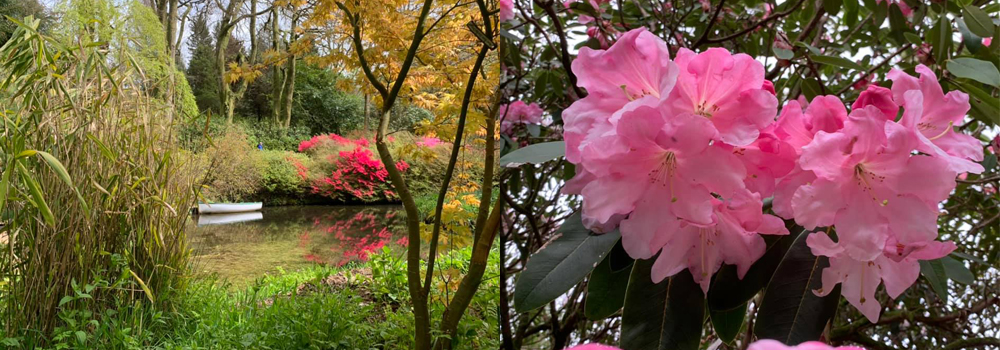 Head to Lukeland Gardens for a lovely trip out with the family while on holiday in Devon.