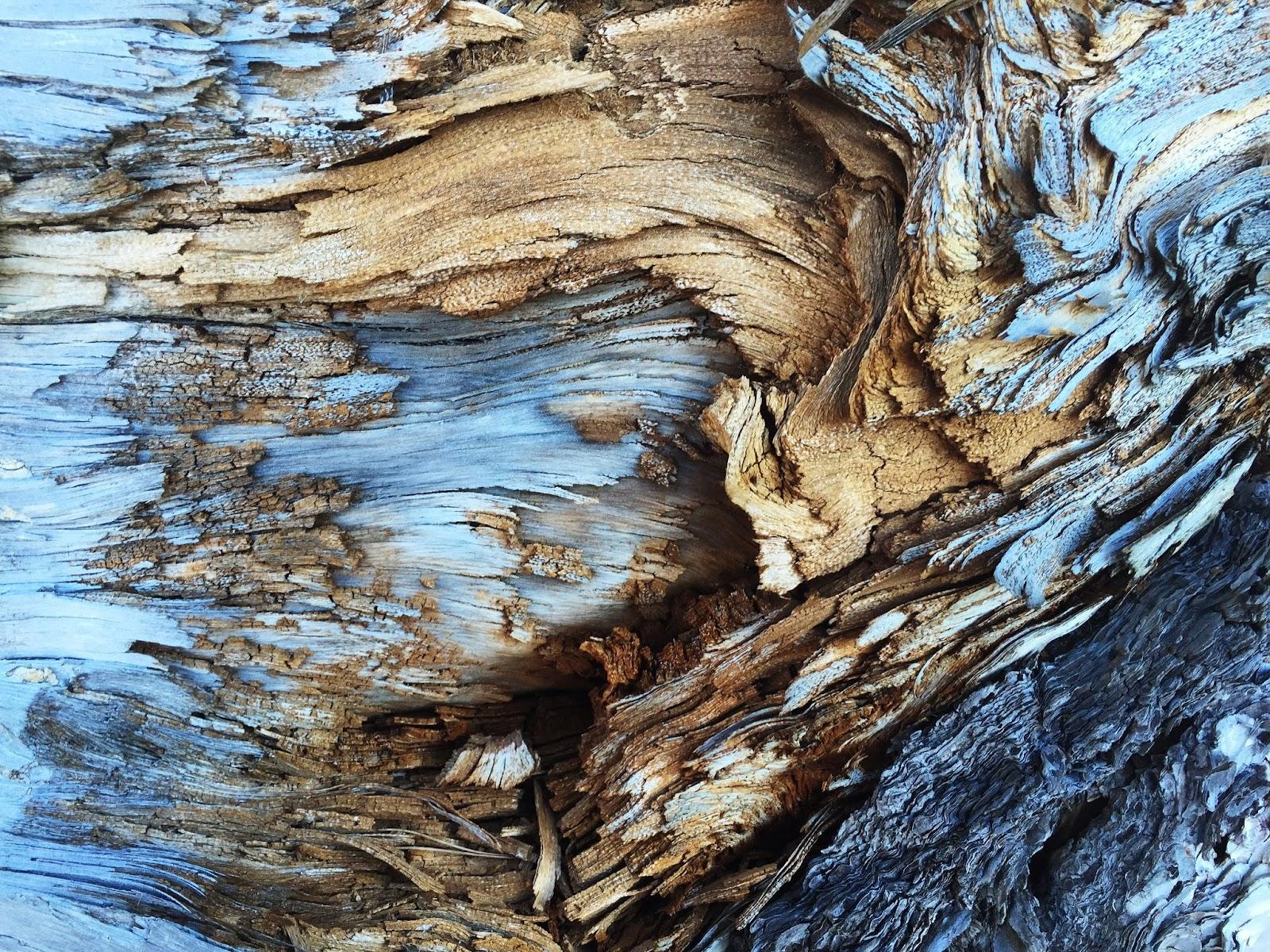 La composición en la fotografía abstracta