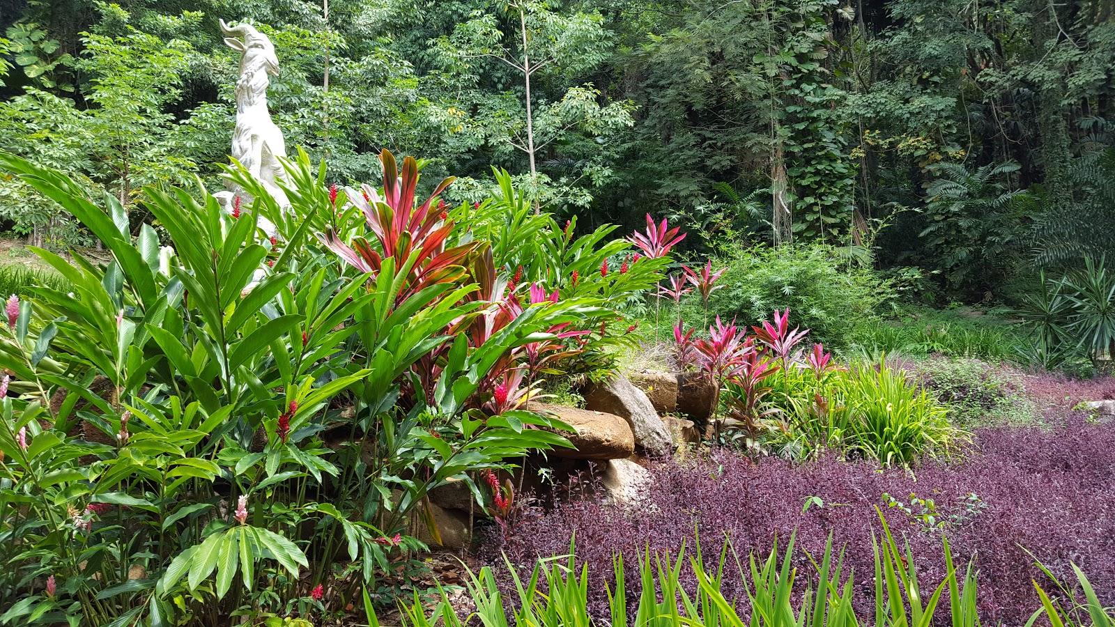 Japansk hage i den botaniske hagen