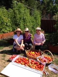 The Interfaith Sustainable Food Collaborative