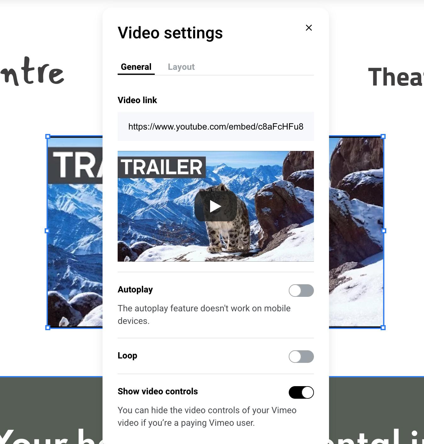 Zyro editor video settings