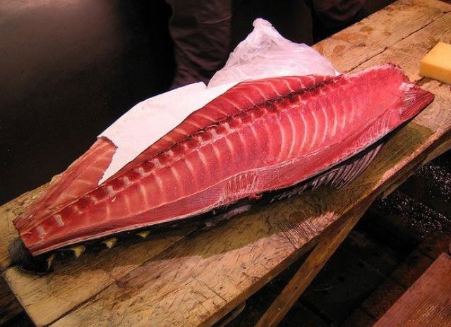 Cá ngừ có tác dụng tăng cương các chức năng của gan