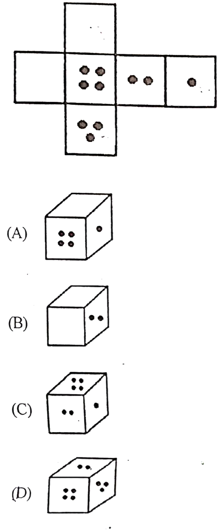 question number 13