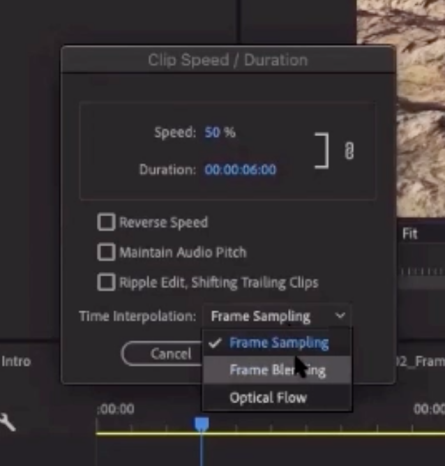 Speed / Duration dialog showing the Time Interpolation settings