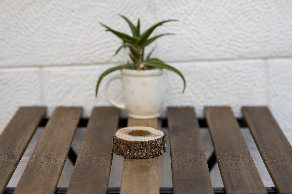 Table de jardin en teck décorée d'une plante