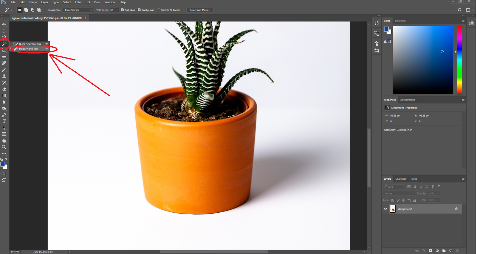 How to Make an Image Transparent in Photoshop or Luminar