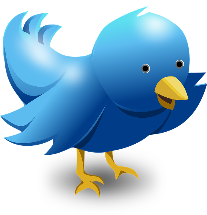 Twitter - Free pictures on Pixabay