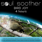 Bird Joy (4 Hours) for Relaxation, Meditation, Reiki, Massage, Tai Chi, Yoga, Aromatherapy, Spa, Deep Sleep and Sound Therapy