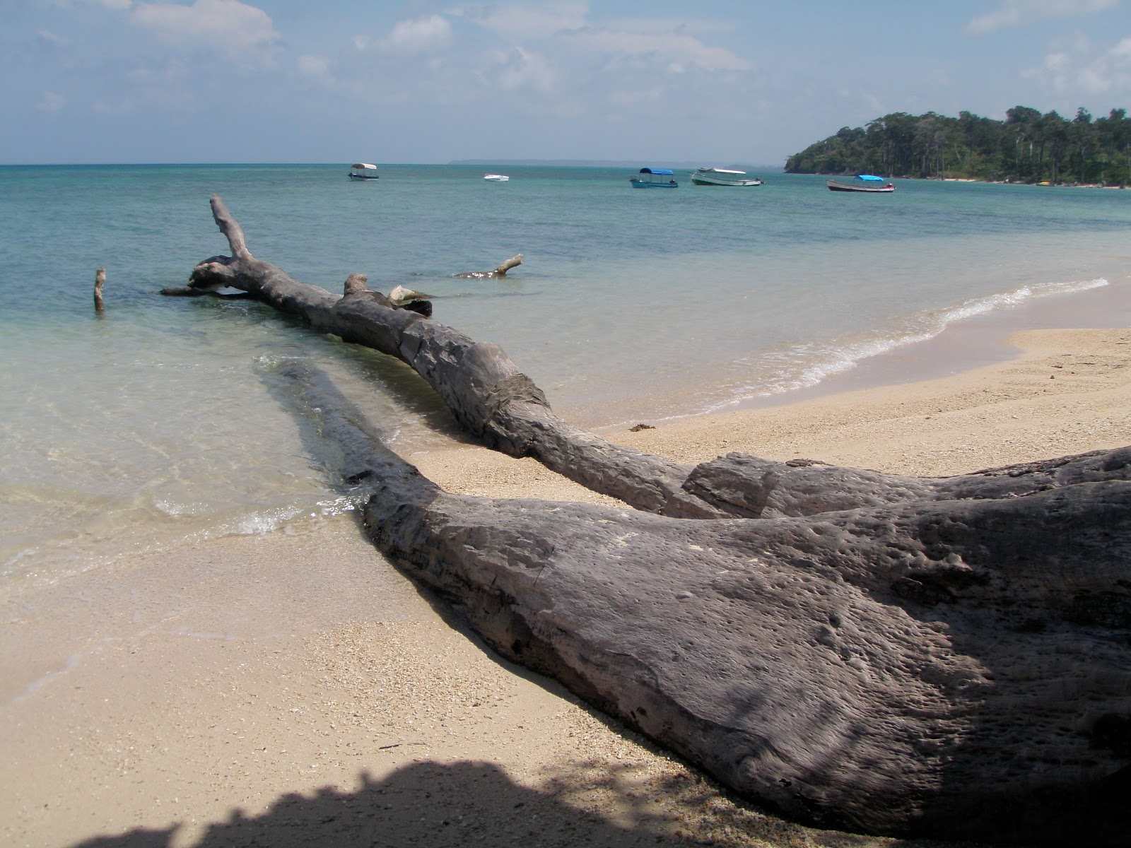 andaman and nicobar island one.JPG