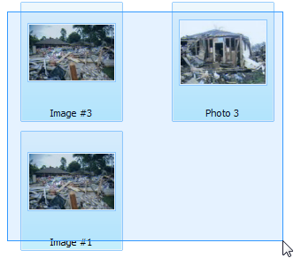 C:\Users\DougG\Desktop\new photo section\mouse.png