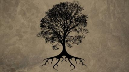 C:\Users\Lopez\Desktop\tree of life.jpg