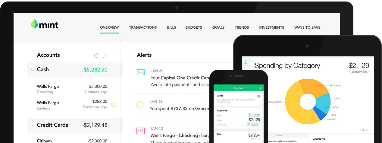 Mint application with charts of spending categories