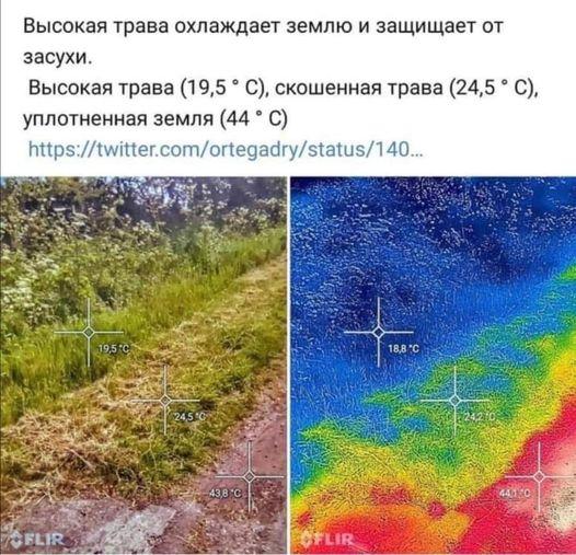 Возможно, это изображение (текст «высокая трава охлаждает землю и защищает от засухи. высокая трава (19,5 C), скошенная трава (24,5 C), уплотненная земля (44 C) http://iter.com/oregary/statu/14. 19,5 18,8 C 245C 43.8 с CELIR 4410 SFLIR»)