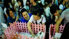 Servicedisk陣列磁碟區2013認養義賣2013.07.26~29-認養會-台北寵物展(南港展覽館)[ 2013 台北寵物展- 愛兔教育專區 ] 7-27 (六)161.jpg