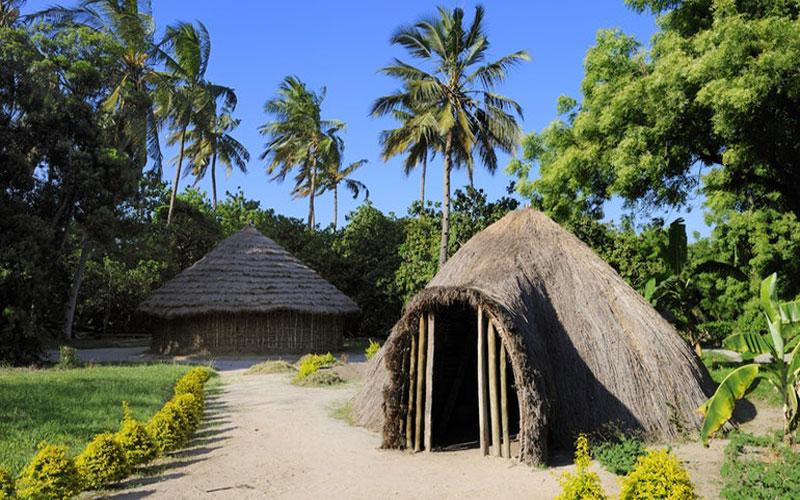 Makumbusho-Village-Museum.jpg