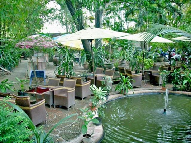 Hòa mình cùng thiên nhiên với cà phê sân vườn