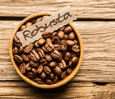 Motherland địa chỉ chuyên cung cấp cà phê giá sỉ cho quán
