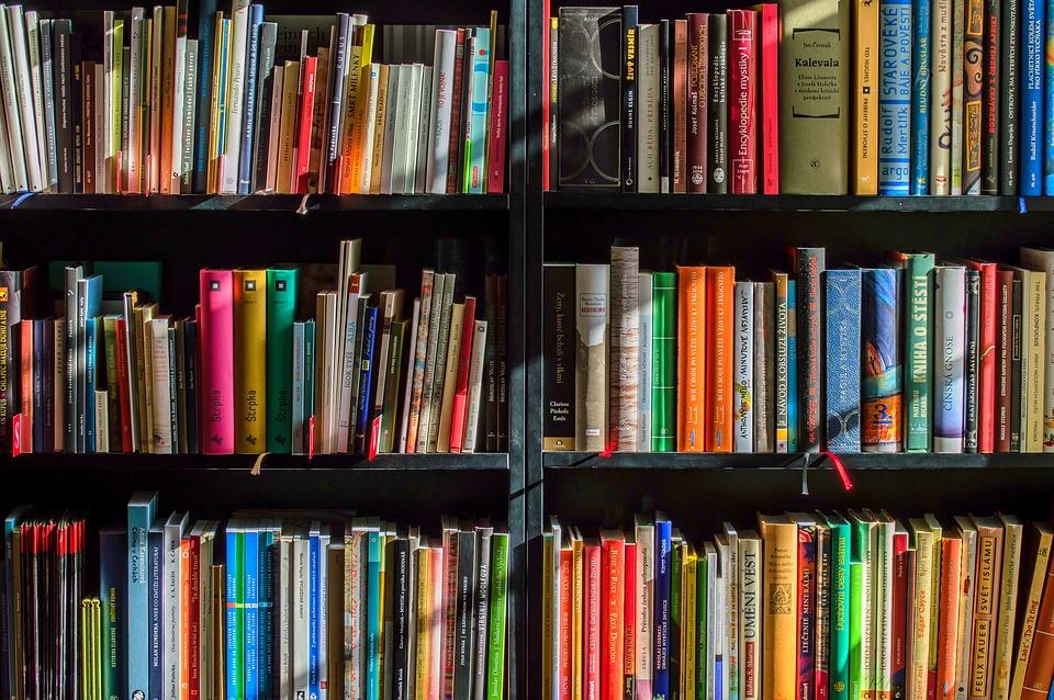 書籍, 書店, 本, 読書, ライター, 読み取り, リーダー, 色, シェルフ, 教育, ライブラリ, 知識
