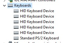 Keyboards section in Device Manager