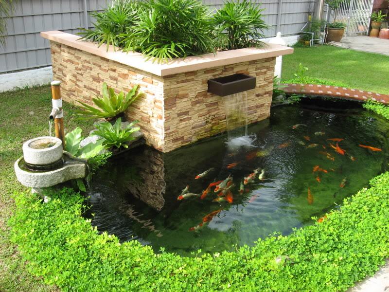 Vườn có hồ nước cũng không nên thiết kế ở nhà có trẻ nhỏ