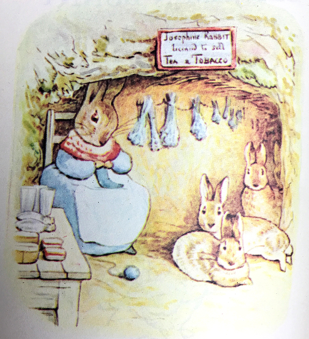 Beatrix Potter Illustration.jpg