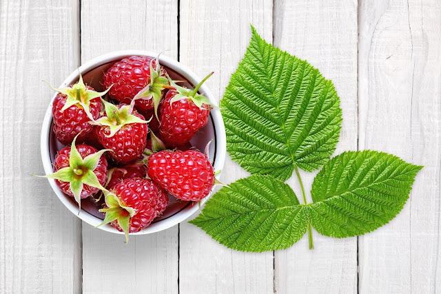 raspberry benefits for women