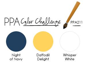 PPA211 Color Challenge