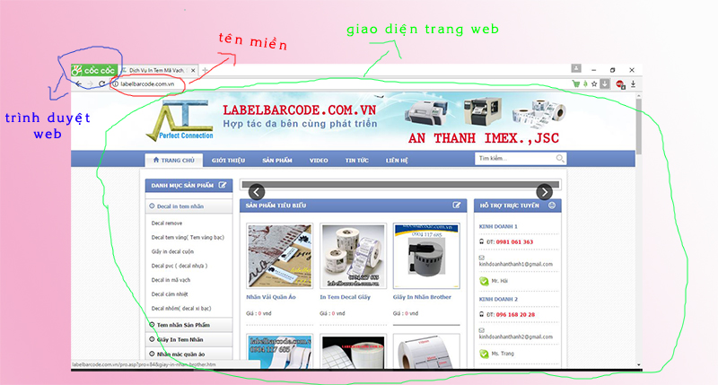 thiet-ke-website-1.jpg