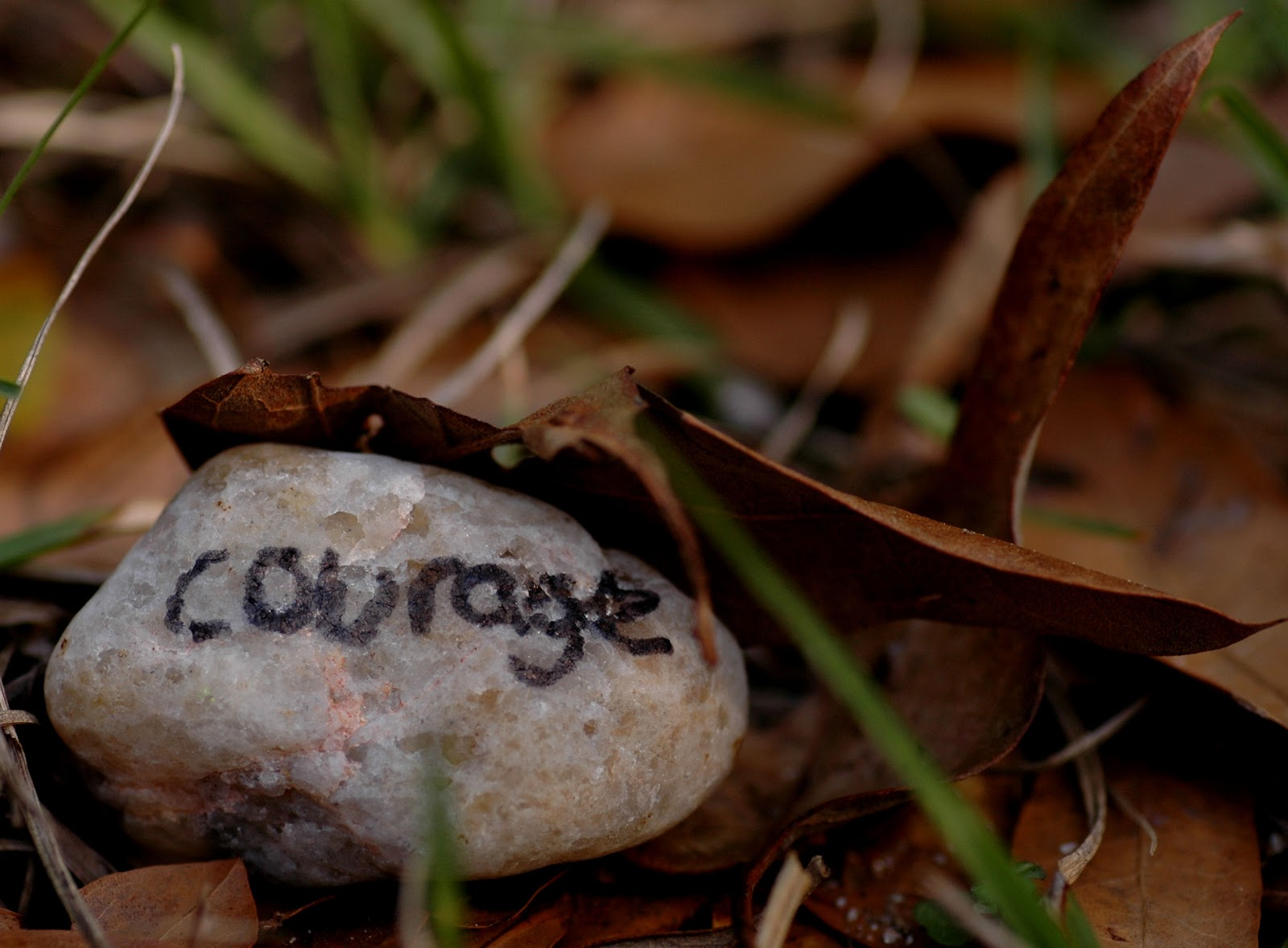 courage_jridgewayphotography.jpg