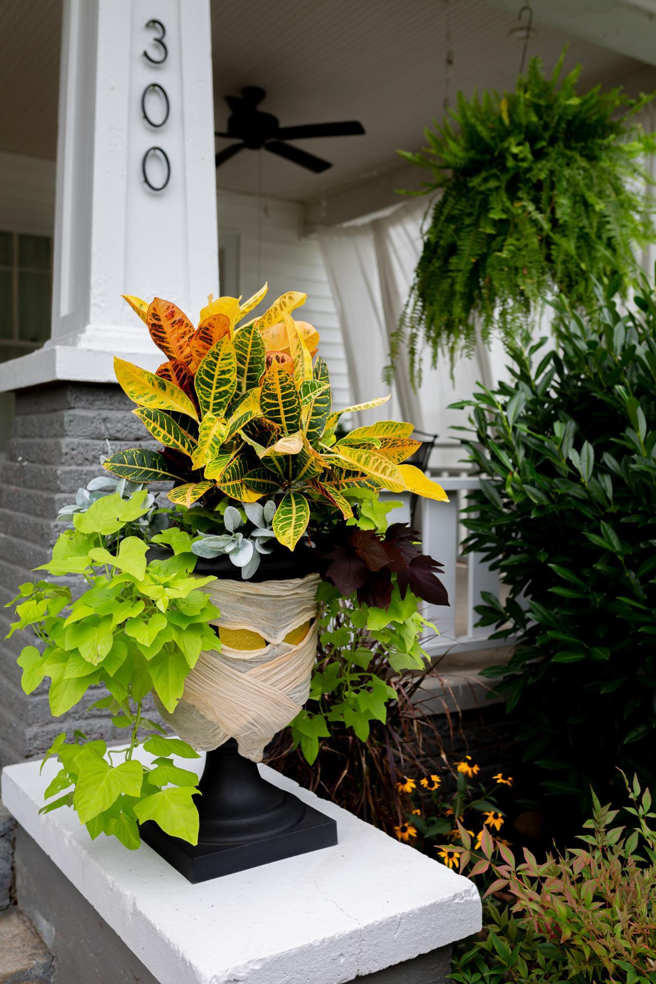 Mummify Your Garden as a Halloween Decoration Ideas