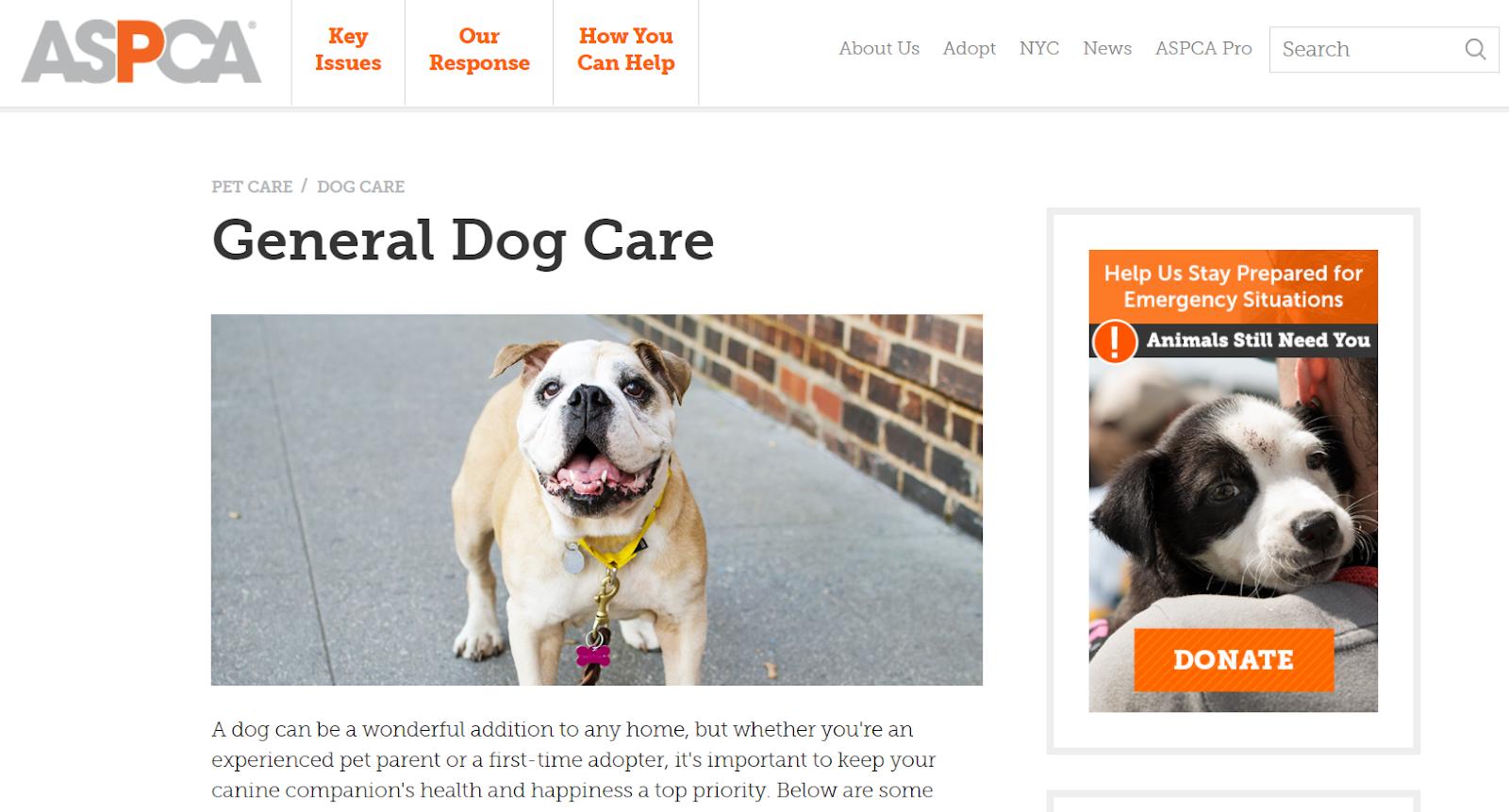 Liên kết quảng cáo về chăm sóc sức khỏe cho vật nuôi