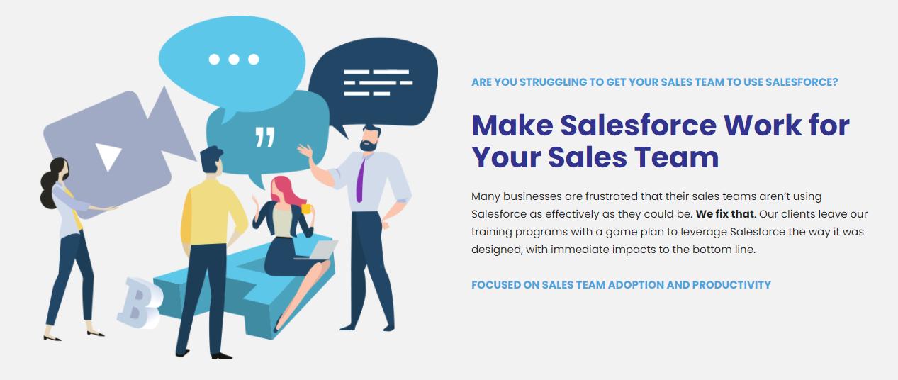 Salesforce Training screen shot
