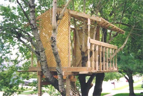 The Open Treehouse