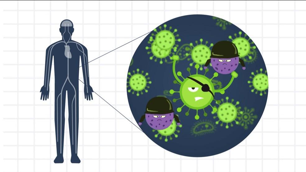 Existem dois tipos de vacina, a com vírus vivo e a com o morto. — Foto: Reprodução/TV Globo