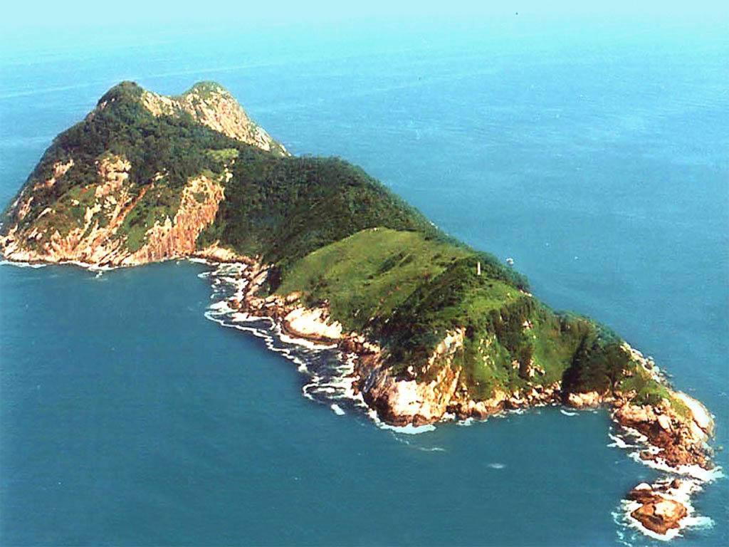 Image result for snake island brazil