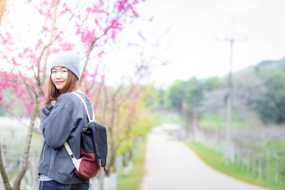 4月 訪日タイ人 桜