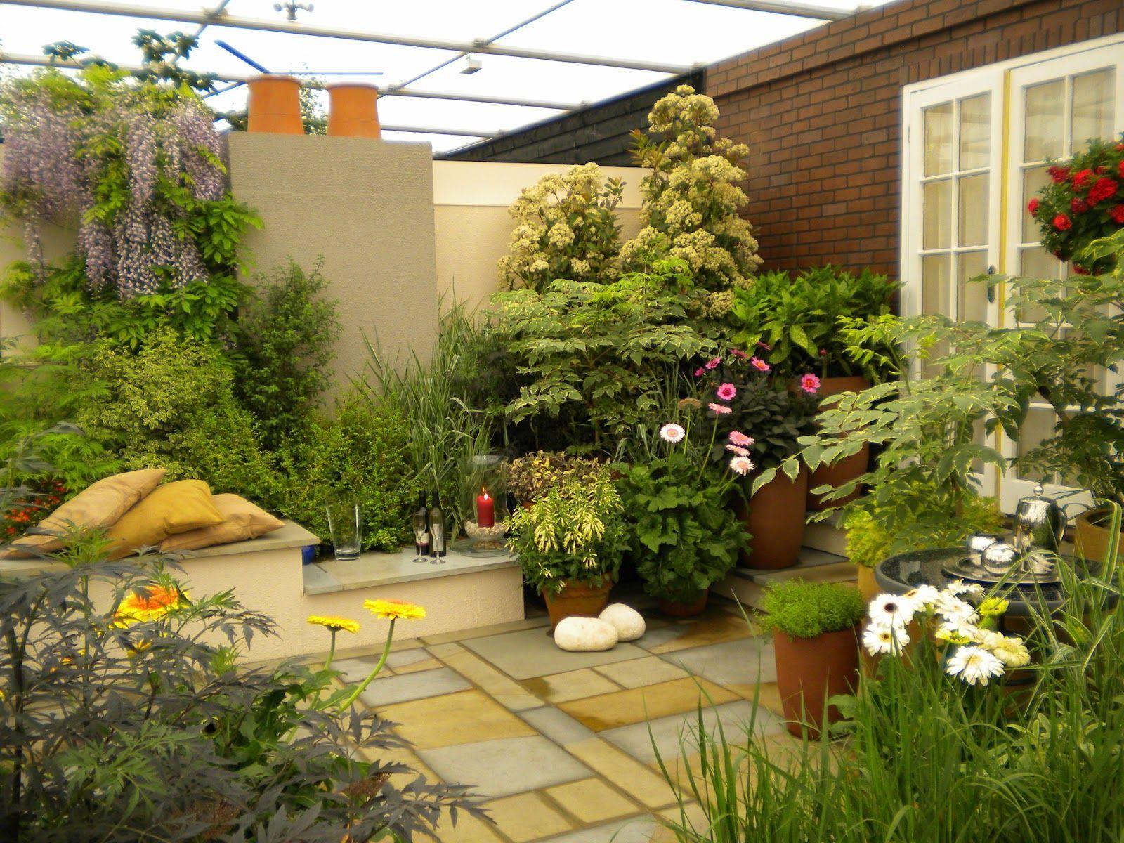 Vườn nhà có trẻ nhỏ không nên trồng các loại cây quý hiếm