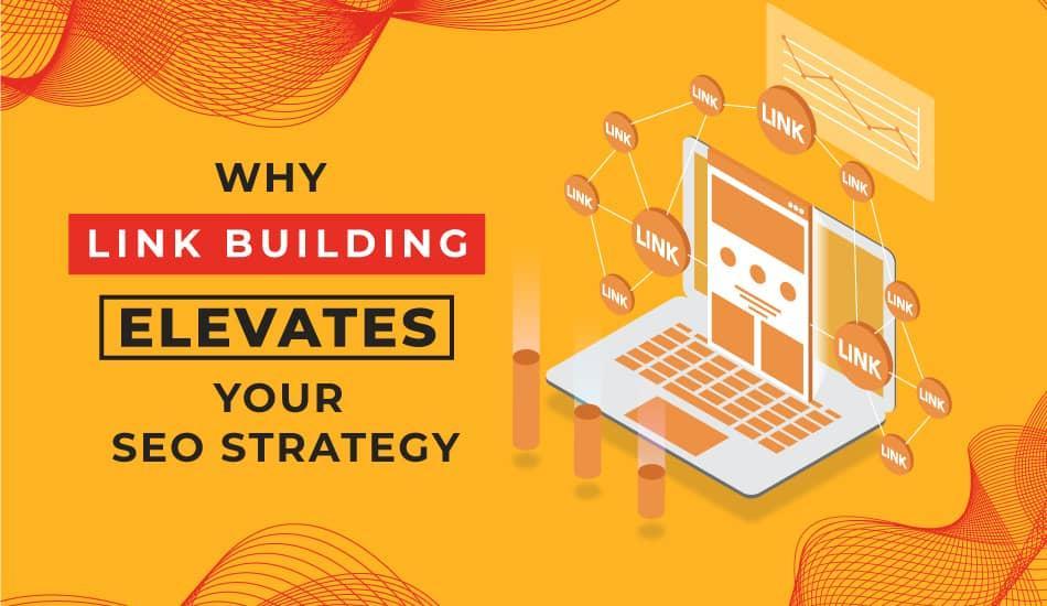 why-link-building-elevates-SEO.jpg