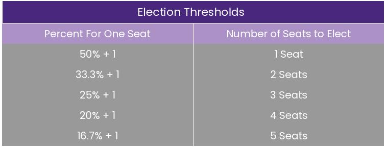 adil-temsil-oylama-sıralı-seçim-oylama-çok sandalyeli-ilçeler-seçimler-siyaset-kadınlar-siyah