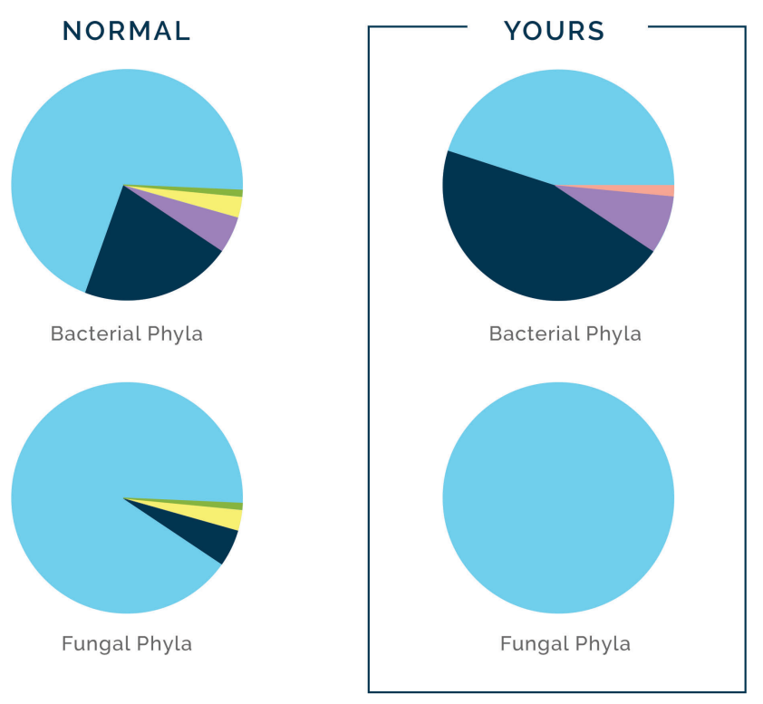 Bacterial composition of the gut.