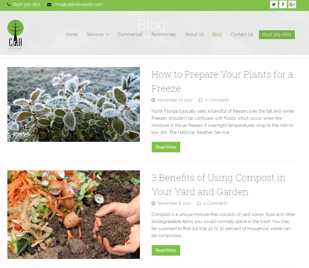 lawn-care-web-design (7)